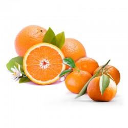 Ortaniques+Appelsiner (6+6)
