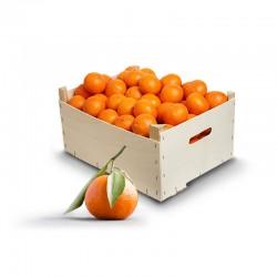 Mandariner Ortaniques (12...